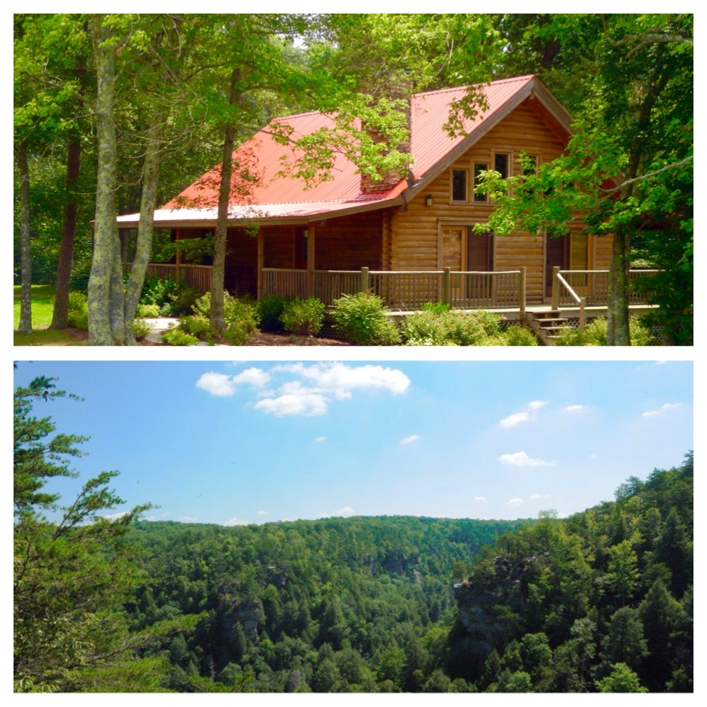 Time to plan for Spring at Deer Creek Cabin🌷