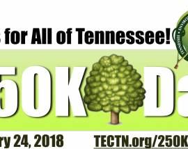250K Tree Day at Cumberland Mountain Park