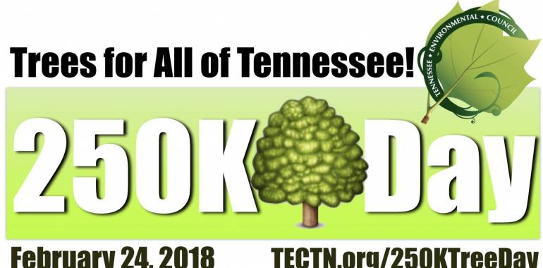 250K Tree Day at Cumberland Mountain Park