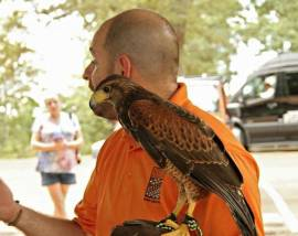 Beneficial Beasts at Cumberland Mountain State Park