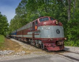 Woo Woo-Get on the Wine Train from Nashville to DelMonaco Winery