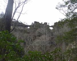 Window Cliffs Guided Hike-April 25, 2018