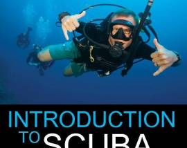 Discover Scuba at Cumberland Mountain State Park-August 13, 2018