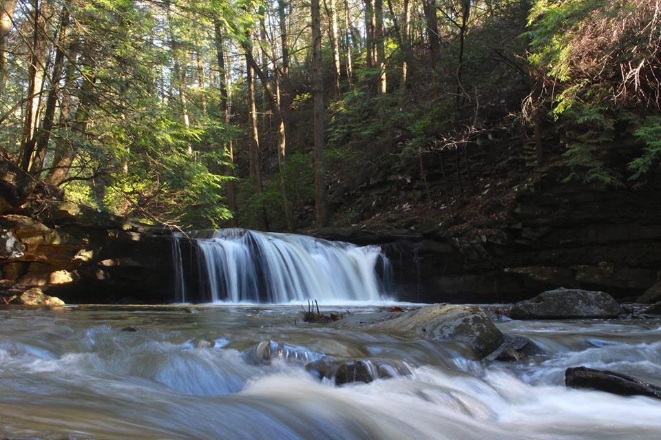 Week Day Waterfall Tour-South Cumberland Park-Feb. 28, 2019