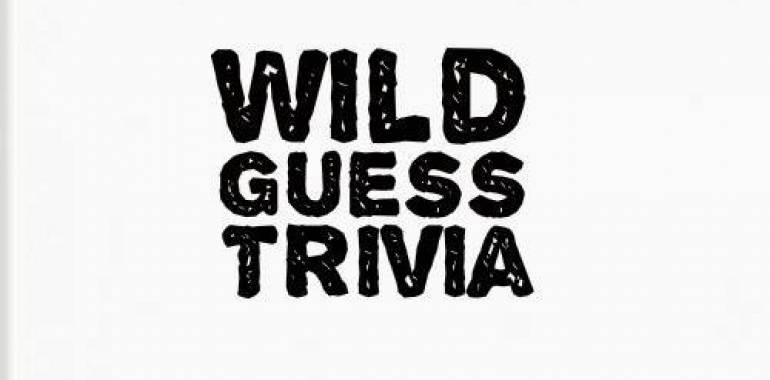 Wild Guess Trivia-Jig Head Brewing Company-March 28, 2019