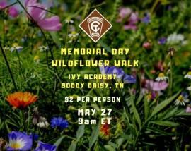 Memorial Day Wildflower Walk at Cumberland Trail-May 27, 2019