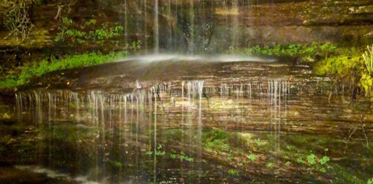 Crystal Falls Lantern Hike-Pickett State Park-August 29, 2019