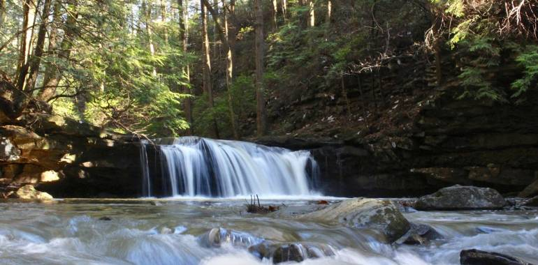 Day after Christmas Hike-South Cumberland State Park