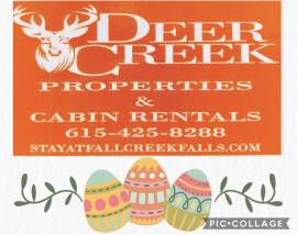 Enjoy some family time at our beautiful cabins at Fall Creek Falls!